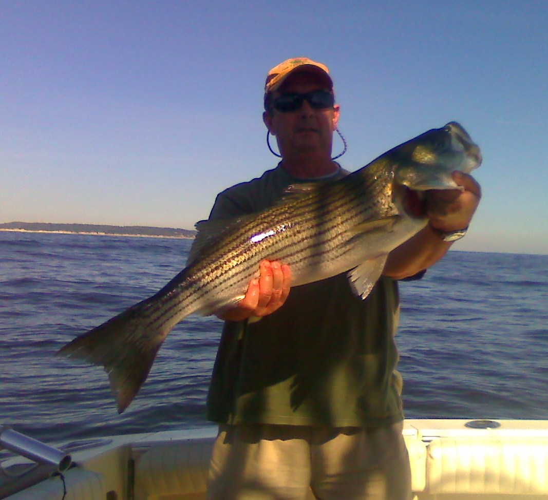 The bite is on for new jersey striped bass october will for Blue fishing nj