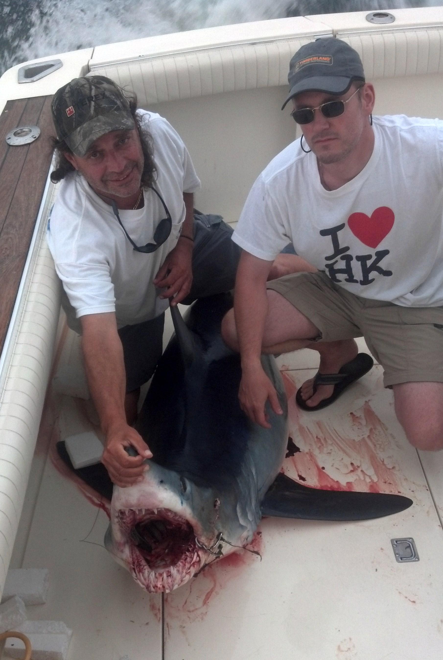 Nj shark fishing charter fishing nj for Blue fishing nj