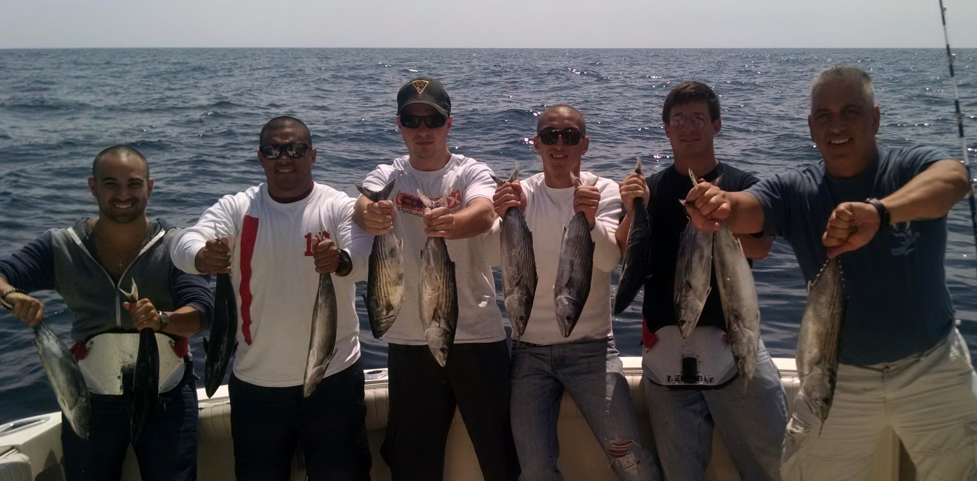Bonito fishing new jersey charter fishing nj for Point pleasant fishing report