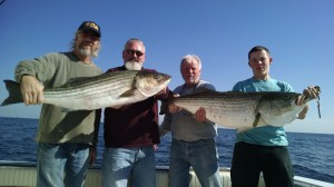 NJ STRIPED BASS FISHING