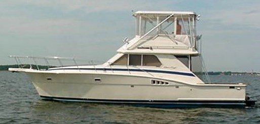 Point pleasant fishing charters nj blue chip sportfishing for Point pleasant fishing boats